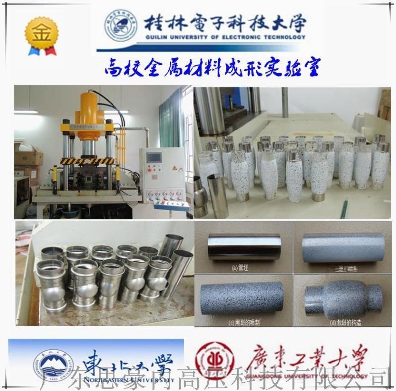 厂家定做 内高压胀形油压机 高校实验室  设备液压机
