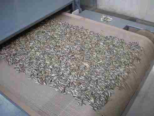 微波瓜子干燥设备