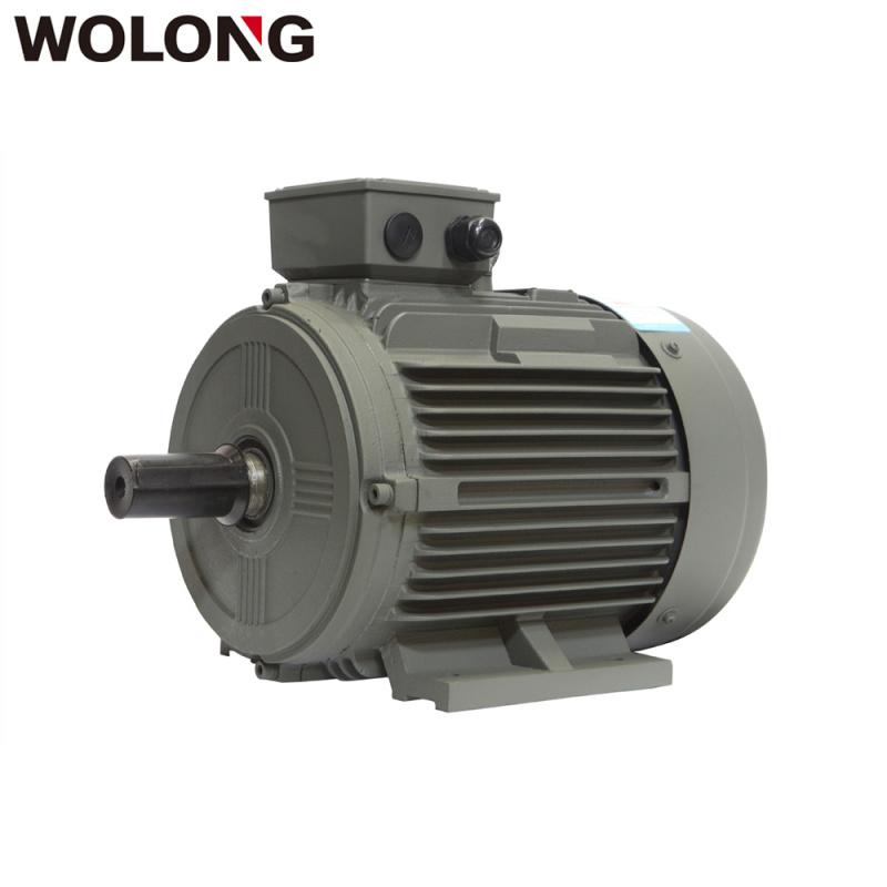 卧龙电机YE3系列  效率三相异步电动机