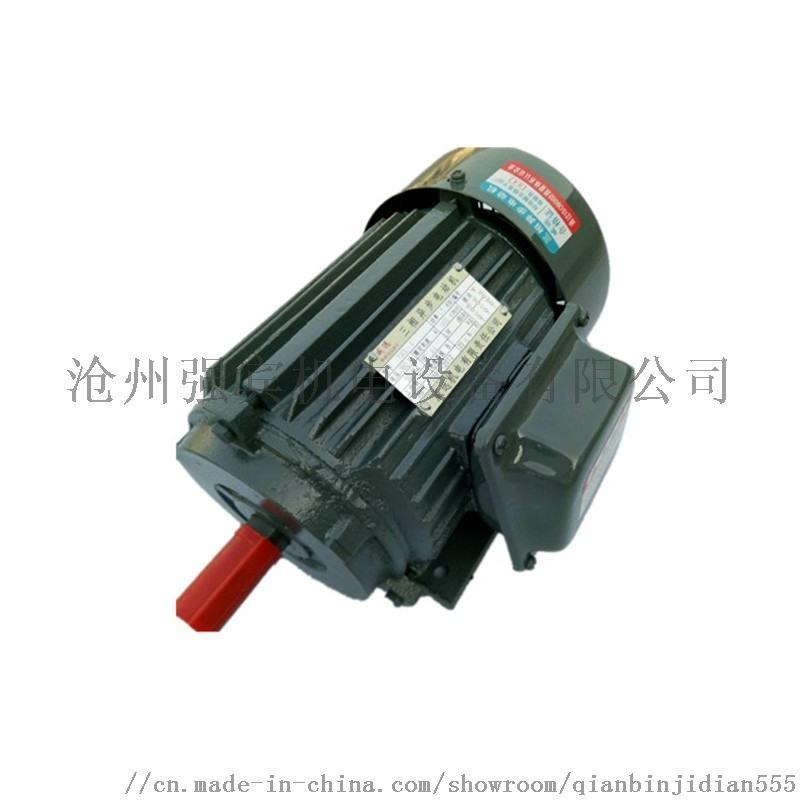 电机立式三相异步电机 河北强宾三相异步电机