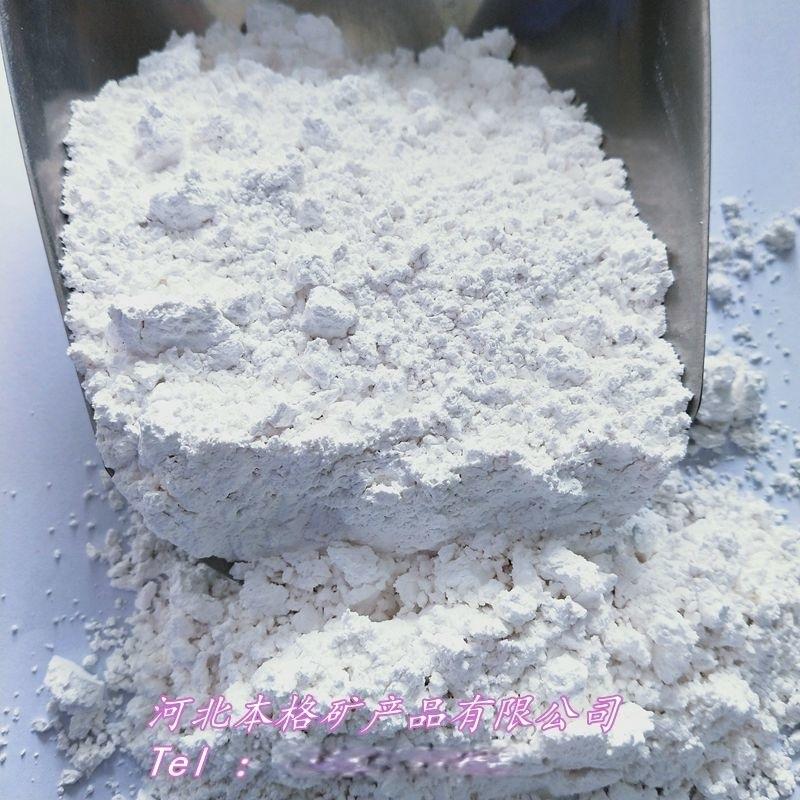 本格贝壳粉涂料内墙 饲料级贝壳粉 贝壳粉煅烧工业级