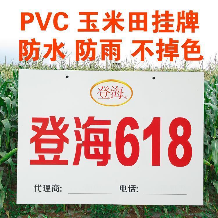 玉米田挂牌防水防晒挂牌PVC示范牌玉米种子牌玉米挂牌