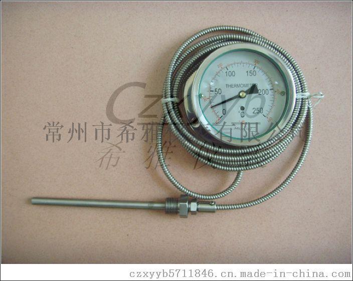WTZ-280气体防腐型全不锈钢压力式温度计