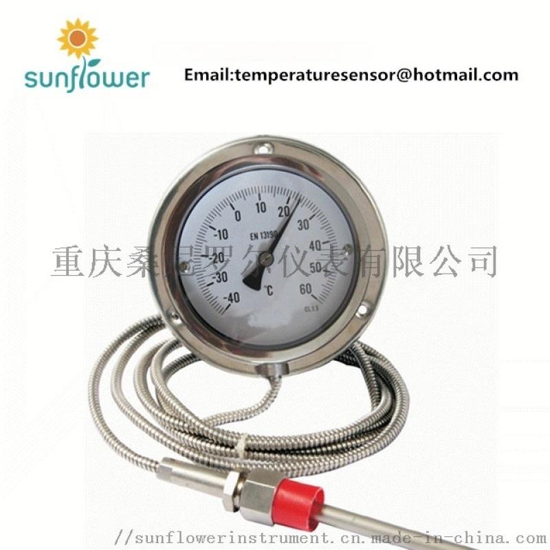 WTQ-280 毛细管压力式温度计