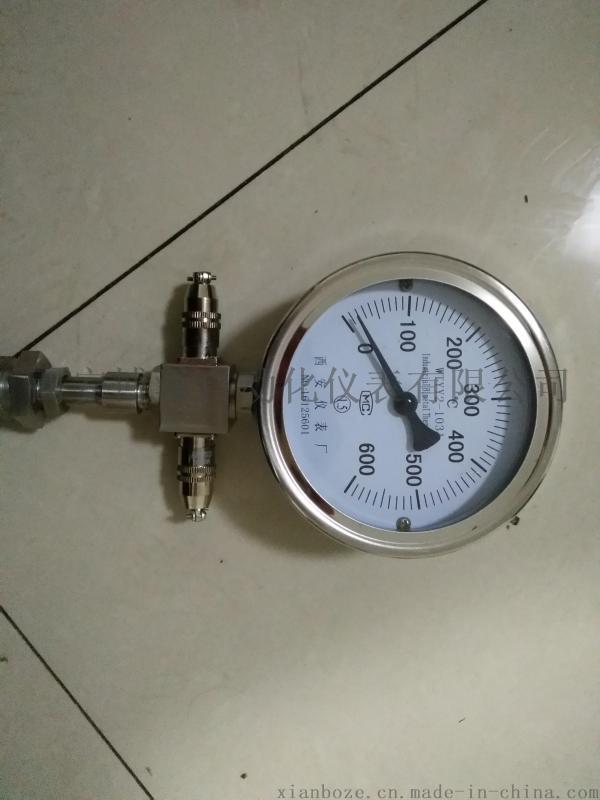 轴瓦测温仪表、WTYY-1021压力式远传温度计