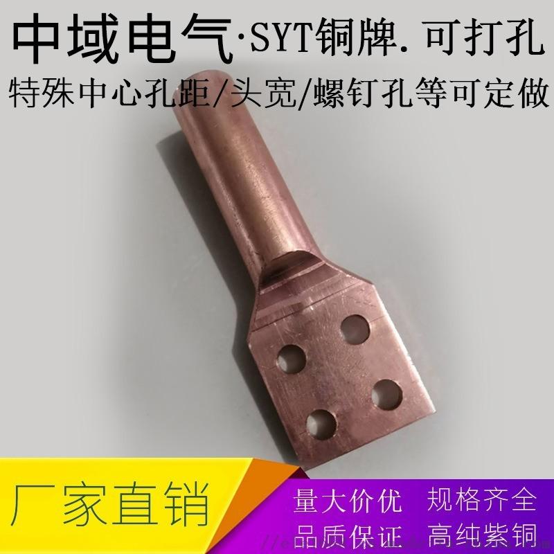 中域电气专业定做非标铜鼻子 四孔铜线耳