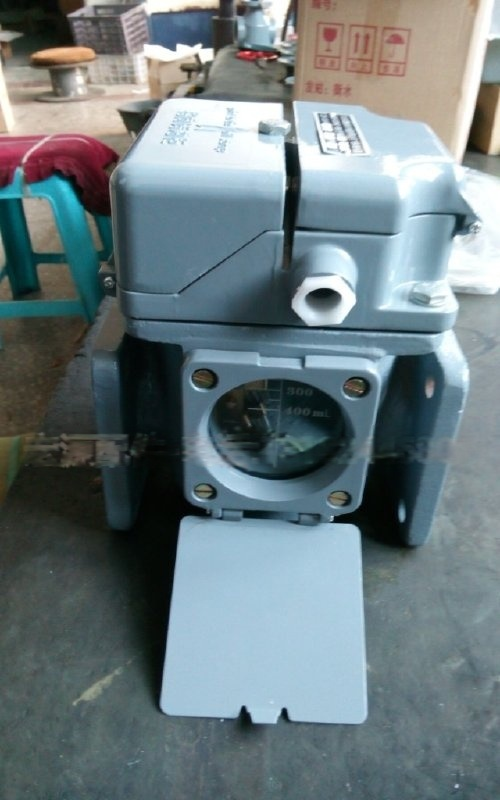 变压器气体保护器QJ1-50-80瓦斯继电器