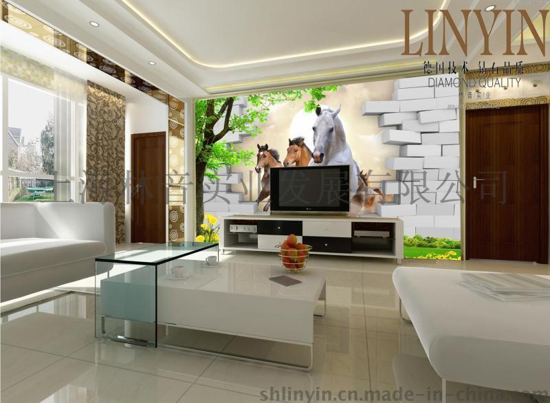 上海林音 3D电视背景墙 LY-3D001