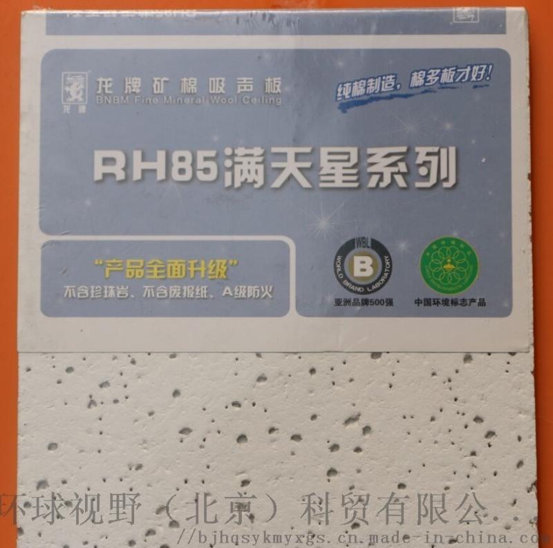 龙牌满天星600x600x12矿棉板A级防火吸音板
