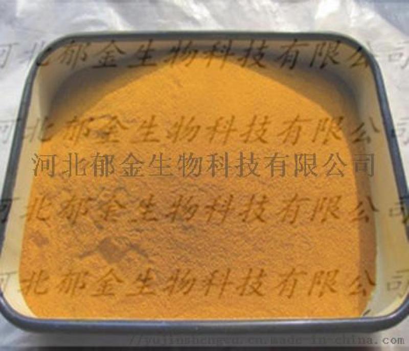 姜黄粉 姜黄色素 厂家直销可量身定做