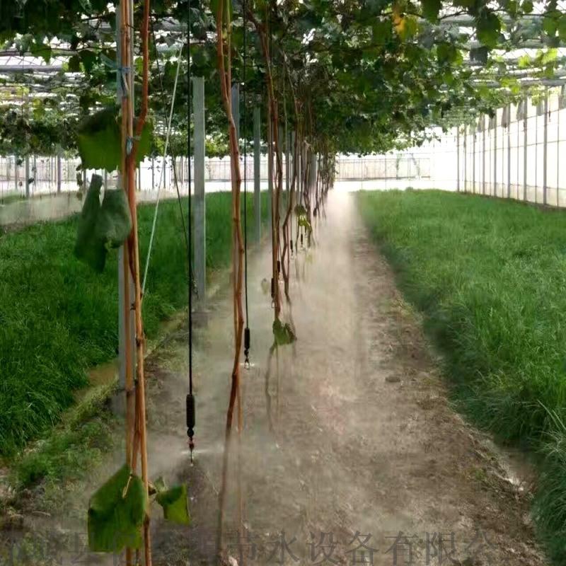 大棚喷灌设备厂家 温室大棚耐用吊挂微喷头