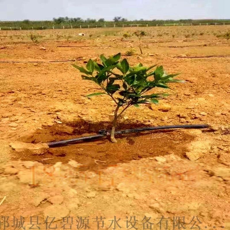 四川猕猴桃滴灌工程 果树规划设计方案 眉山滴管厂家