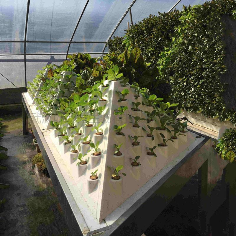 温室大棚 金字塔雾培 叶菜种植 水培塔