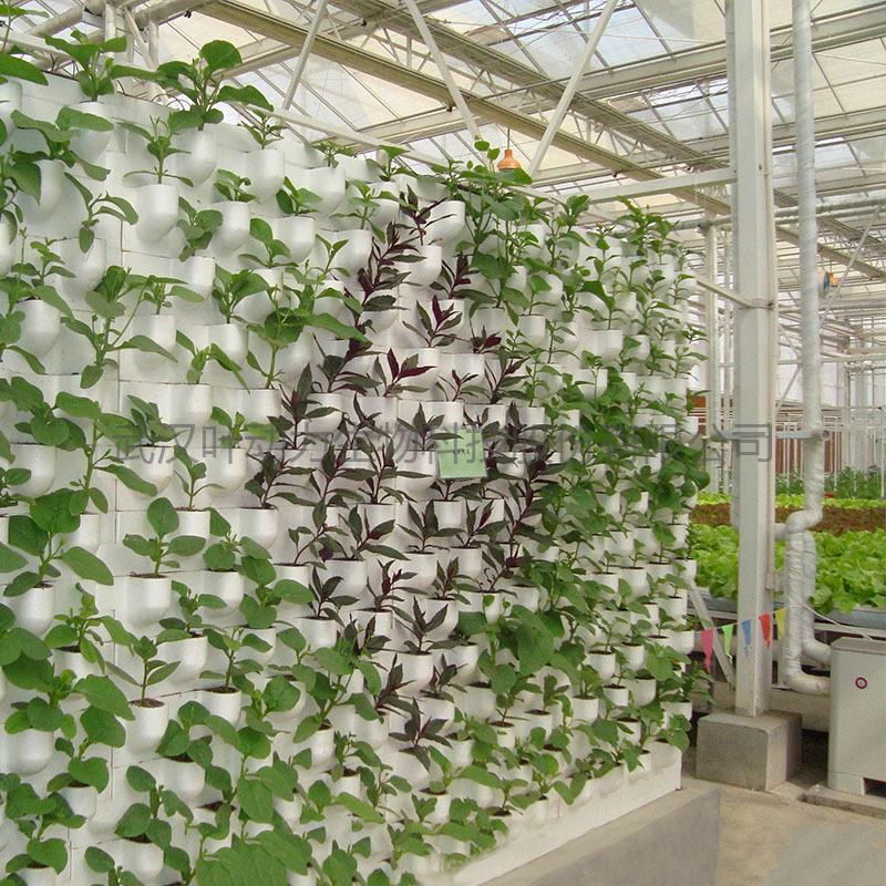 温室大棚 链条组合式 墙体基质栽培墙