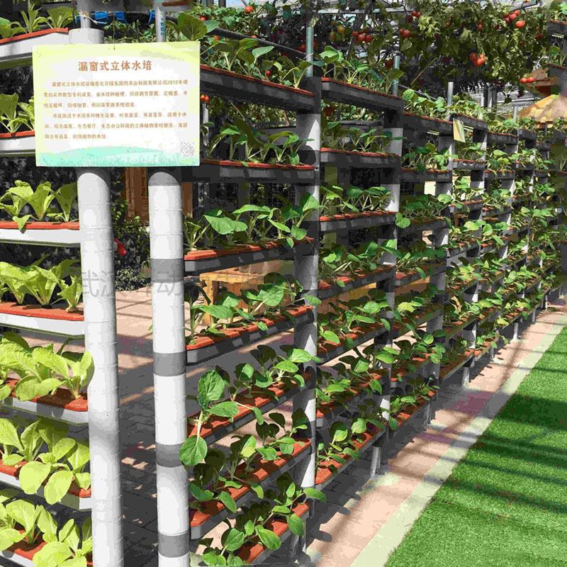 温室大棚水培 立体漏窗式 无土栽培 种植架
