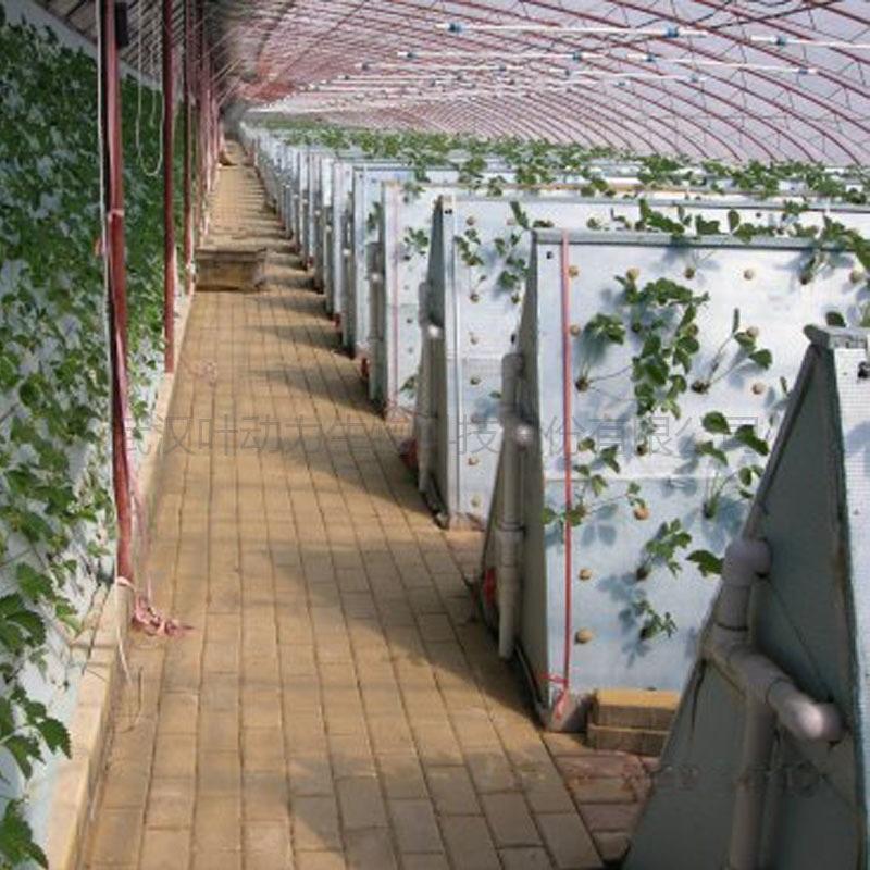 温室大棚 无土栽培 三角气雾栽培架