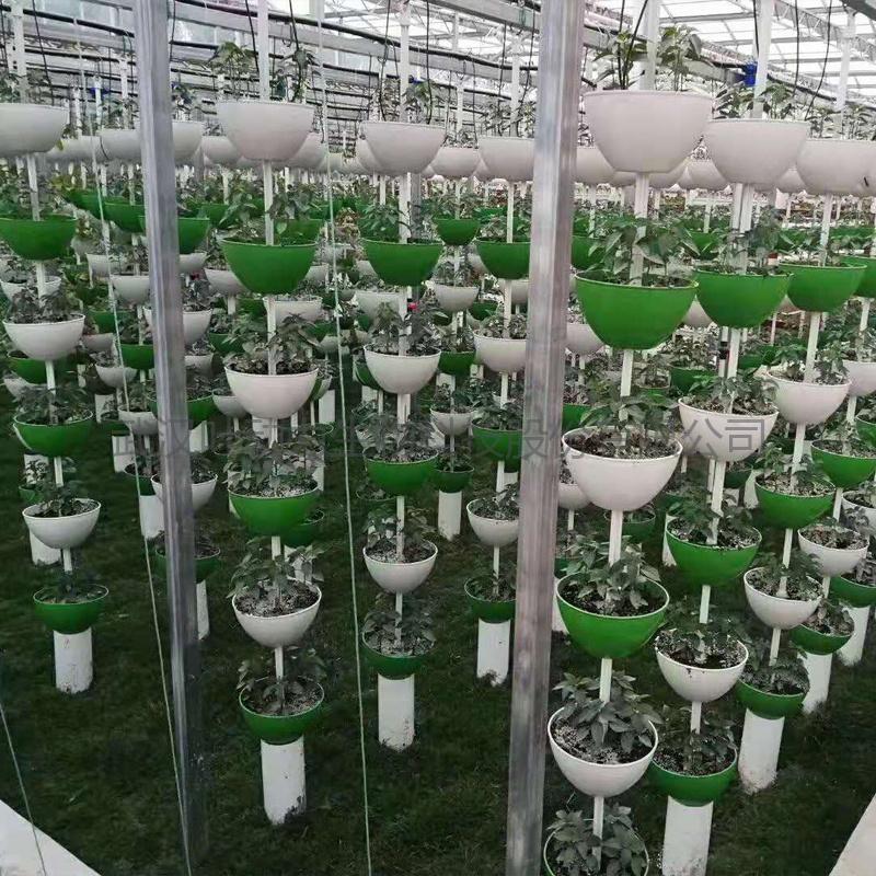 温室立体种植 串盆吊挂式 无土基质栽培塔