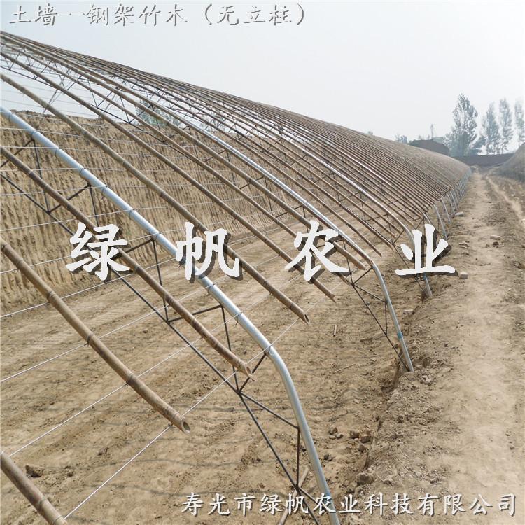 供应寿光绿帆农业 钢架竹木PVC日光温室 蔬菜大棚