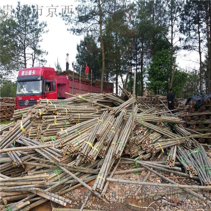 2米粗竹竿 绿化杆 支撑杆 竹竿尖 毛竹梢