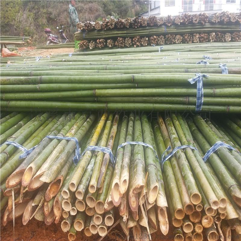 绿化工程、园林苗圃、造地工程用的大小竹竿