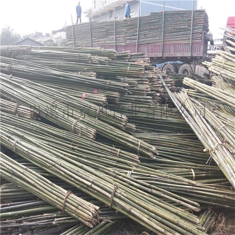 厂家直销2米-6米小山竹 小竹竿