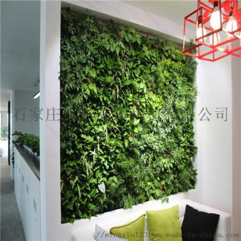 张家口绿植植物墙报价