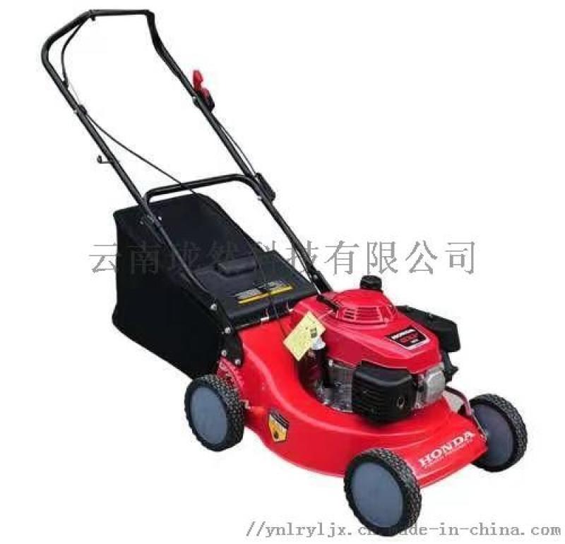草坪机进口割草机本田GXV160汽油机剪草机