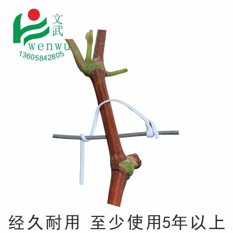 文武包装 第三代园林扎丝绑线 绑枝塑铁丝扎藤蔓枝条露天葡萄丝带